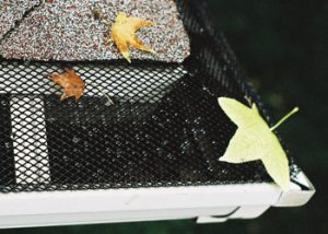A top view of the Mini Hole gutter screen system with leaves on top that would have otherwise clogged the gutters.