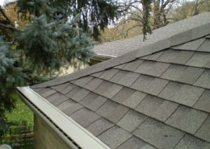 The LeaFree gutter guard system installed on a home with gray asphalt shingle roofing.