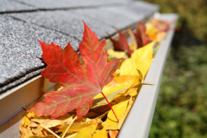 A close-up image of leaves cloggin a gutter system.